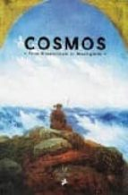 Cosmos -Romanticism to Avant Garde /Anglais: From Romanticism to the Avant-garde, 1801-2001 (Prestel)