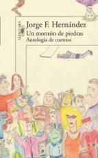 UN MONTÓN DE PIEDRAS (EBOOK)