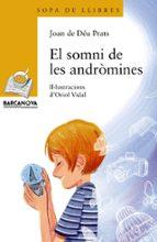 El Somni De Les Andròmines (Llibres Infantils I Juvenils - Sopa De Llibres. Sèrie Groga)