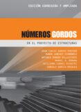 NUMEROS GORDOS EN EL PROYECTO DE ESTRUCTURAS (NUEVA EDICION REVISADA) - 9788493227043 - JUAN CARLOS ARROYO PORTERO