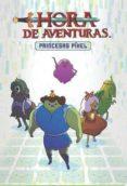HORA DE AVENTURAS: PRINCESAS PIXEL - 9788467917253 - DANIELLE CORSETTO