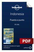 Ebook para descarga inmediata INDONESIA 5_1. PREPARACIÓN DEL VIAJE FB2 DJVU de VARIOS 9788408220763 in Spanish