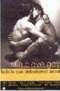 EN CLAVE GAY: TODO LO QUE DEBERIAMOS SABER - 9788495346193 - VV.AA.