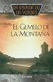 el gemelo de la montaña: la espada de la verdad (vol. 10)-9788448032333