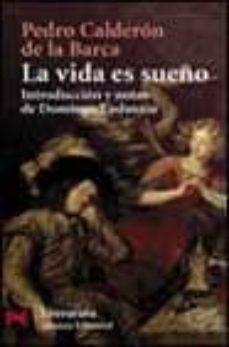 Costosdelaimpunidad.mx La Vida Es Sueño Image