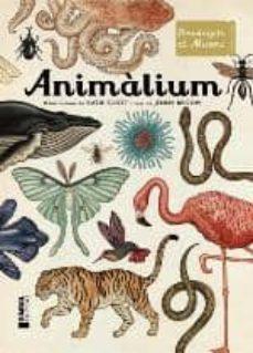 animalium-katie scot-9788415315223