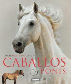 Ironbikepuglia.it Caballos Y Ponis Image