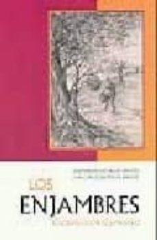 los enjambres-jose ramon luis-yague-9788472120853