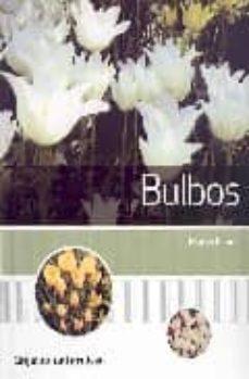 Iguanabus.es Bulbos Image