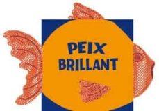 Alienazioneparentale.it Peix Brillant: Animals Que Brillen Image