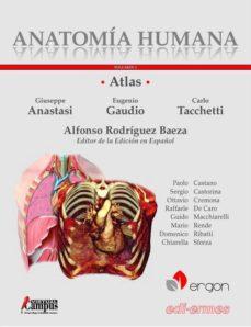 Ebooks descargables ATLAS ANATOMIA HUMANA T. I de ALFONSO RODRÍGUEZ BAEZA. GIUSEPPE ANASTASI. EUGENIO GAUDIO. CARLO TACCHETTI en español