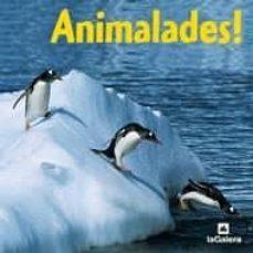 Cdaea.es Animalades! (El Mon En Fotos) Image