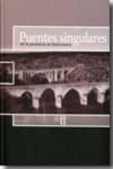 puentes singulares de la provincia de salamanca vol. ii-9788477973393
