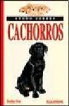 Emprende2020.es Todo Sobre Cachorros Image